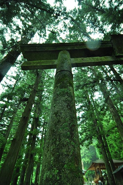 【辛口オネエ】パワースポットの真実(1)ご利益ゼロのなんちゃって神社仏閣の話
