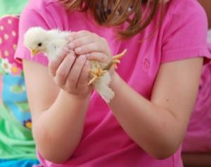 鳥の夢占い診断・意味◆鳥が手の指に止まる夢