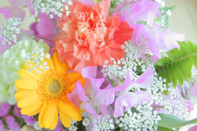 【運命の花はコレ!!】あなたにぴったりな花言葉診断