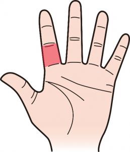第三関節|人差し指のほくろ占い