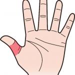 第二関節 親指のほくろ占い