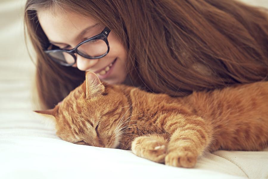 夢占い◆猫を飼う夢の意味