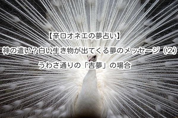 【辛口オネエの夢占い】神の遣い?白い生き物が出てくる夢のメッセージ(2)うわさ通りの「吉夢」の場合