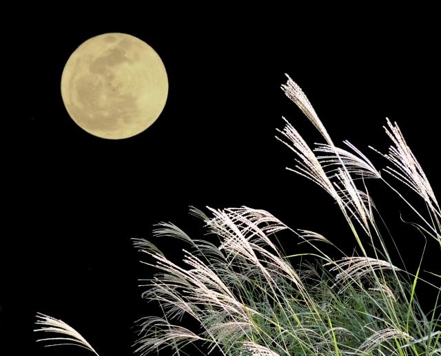 明日『10月16日』はおひつじ座満月デトックスDAY★【手放す満月】で幸福を呼び込む!新月ワークの振り返りも♪【カルロッタの満月ワークおまじない】