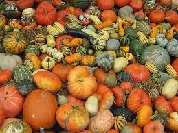秋の収穫祭!新鮮な海に幸や山の幸を食べつくそう!九州編