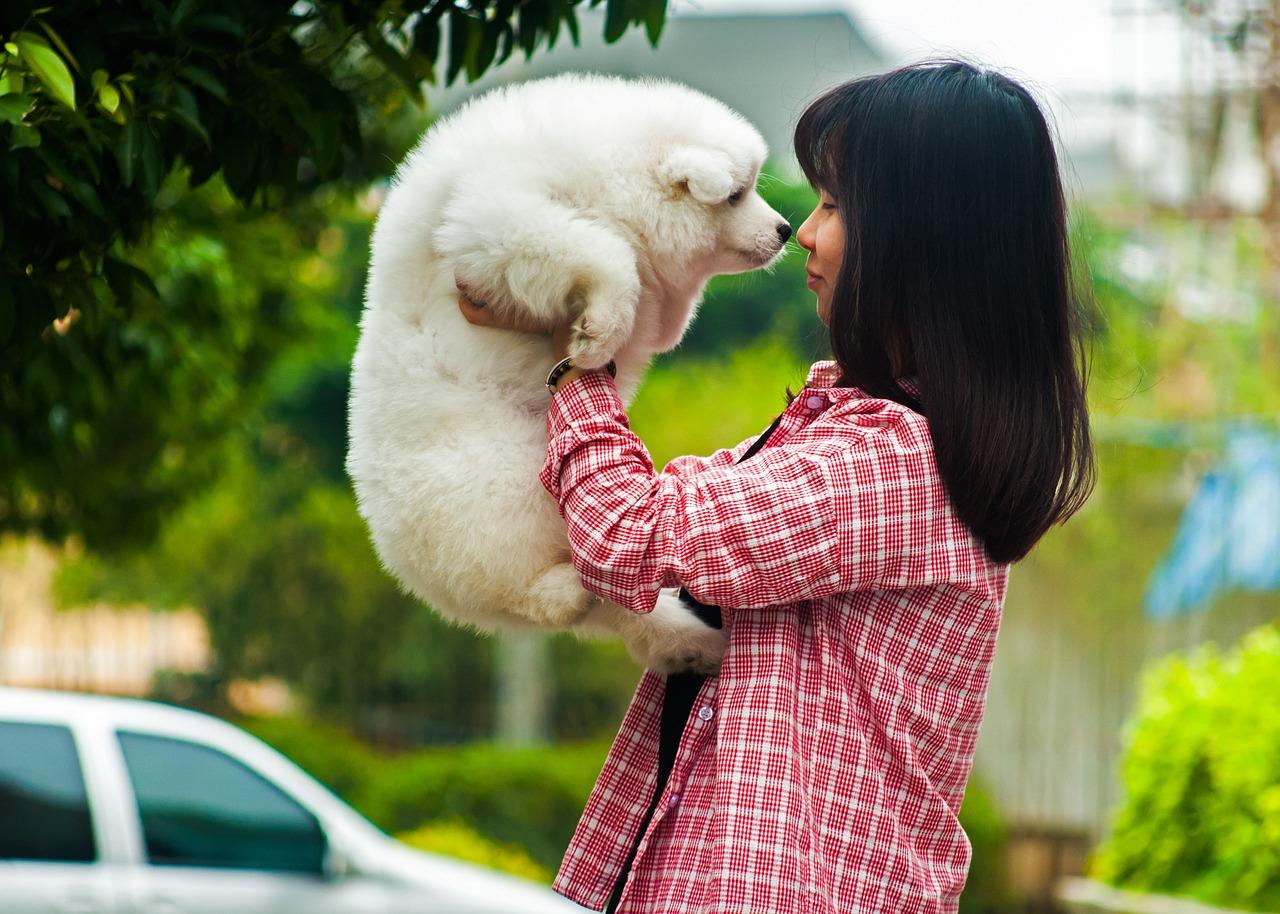 ペットとのキスは本当に大丈夫?スキンシップのしすぎに注意して!