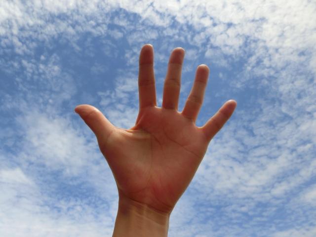 あなたの手の形、指の形はどんな形ですか?
