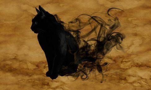 【芦屋道顕】猫は異界の生き物(2)猫は魔物?天国に行かない?【真夏の怪談】