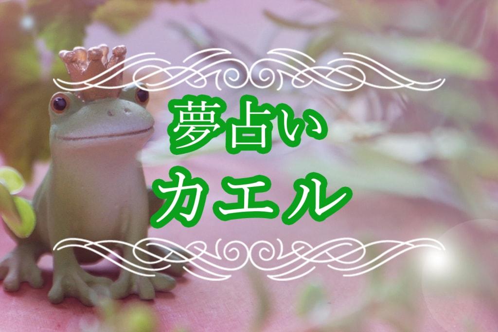 夢占い|カエルの夢の意味!カエルが大量にいる・カエルを殺す夢など