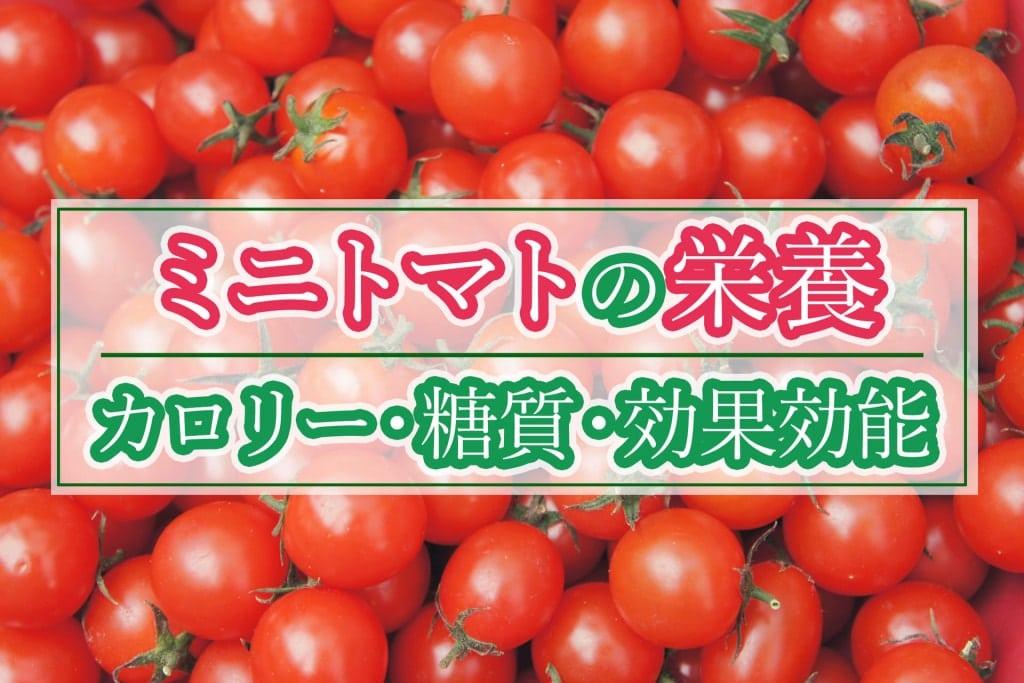 ミニトマトの栄養は?カロリーや糖質、効果効能まとめ