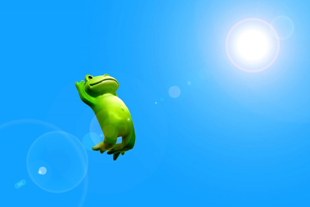 カエルの夢占い♥元気に飛び跳ねるカエルの夢