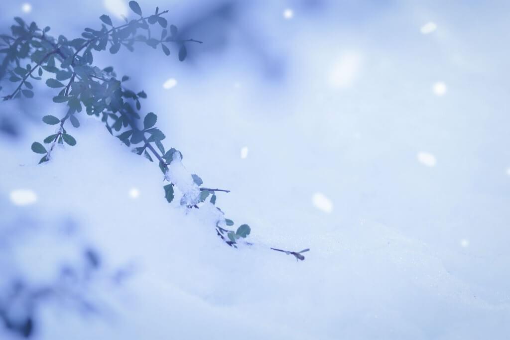 星座別 ≪週運≫ 1月8~ 1月14日の運気 双子座/天秤座/水瓶座