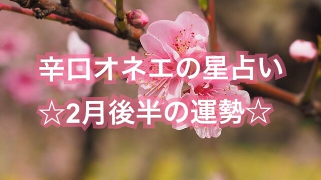 【辛口オネエ】2月後半の運勢◆双子座・天秤座・水瓶座