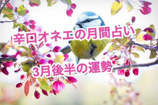 【辛口オネエ】3月後半の運勢◆蟹座・蠍座・魚座