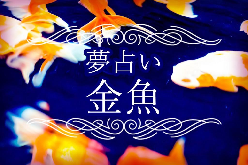 【夢占い】金魚の夢が意味するものは?金魚が死ぬ夢や生き返る夢など