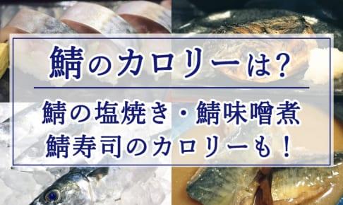 鯖のカロリーは?鯖の味噌煮や焼き鯖寿司、鯖の塩焼きのカロリーも!