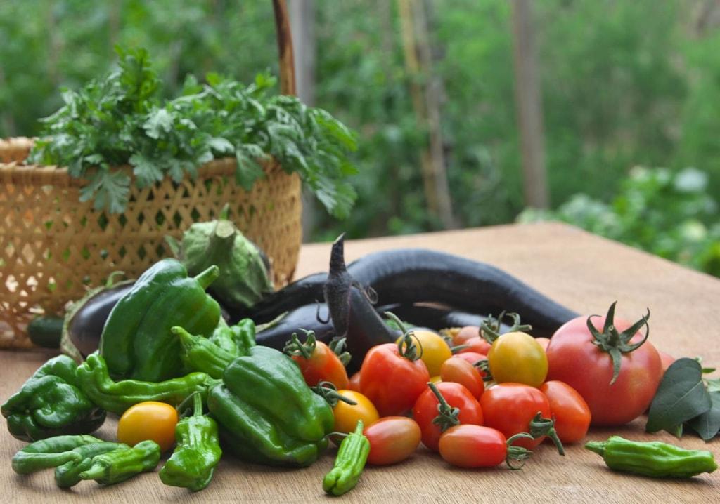 ダイエットに野菜が効果的?