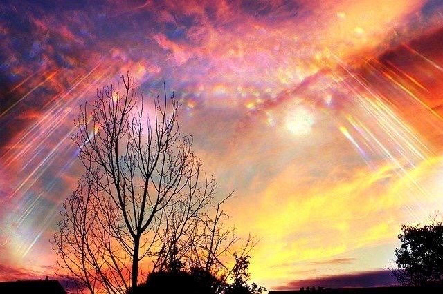 新エデン(2)死んだはずの愛しい誰かにまた逢える『三次元の』星【辛スピ】おしゃべり隕石(22)