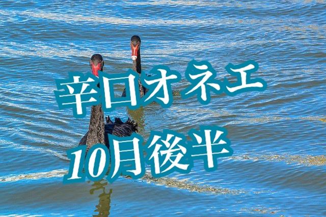 10月後半【辛口オネエ】双子座・天秤座・水瓶座